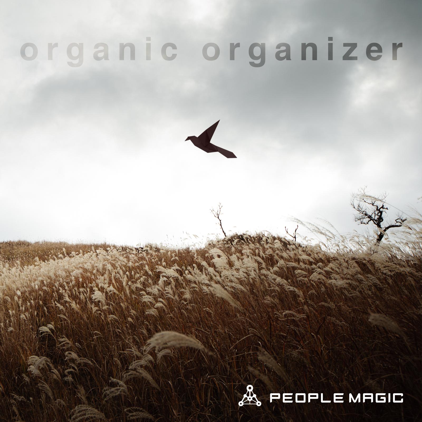 organic organizer